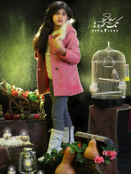 yalda and christmasTheme 7 529x705 عکاسی شب یلدا و کریسمس