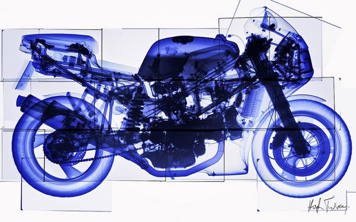 02 وقتی هنر عکاسی با اشعه ایکس همراه شود
