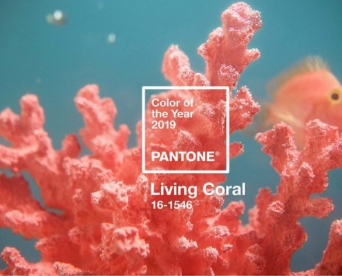 living coral 495x400 مطالب خواندنی