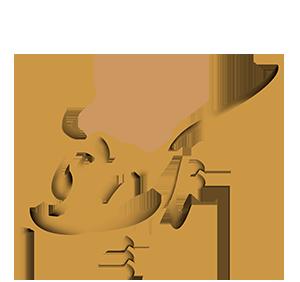 logo takchehreha خانه